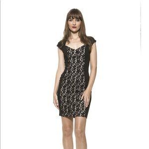 Alexia Admor dress